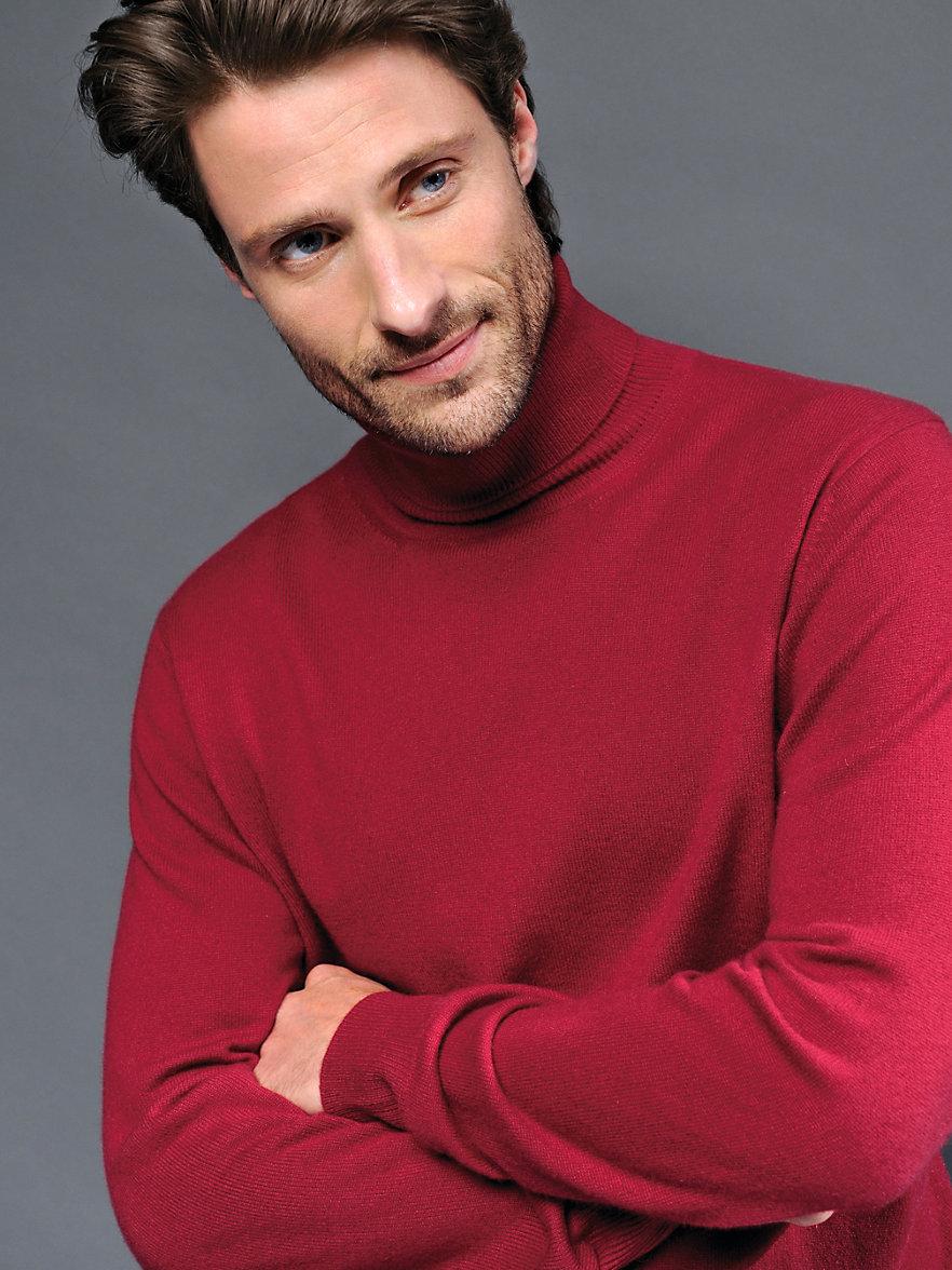 peter hahn cashmere rollkragen pullover modell roland bordeaux. Black Bedroom Furniture Sets. Home Design Ideas